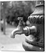 A Water Tap In The Park Acrylic Print