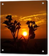 A Weed Sunset Acrylic Print