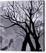 A Winter Night Silhouette Acrylic Print