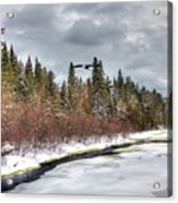 A Winter View Acrylic Print