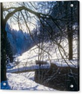 A Winter Walk In The Black Forest Acrylic Print