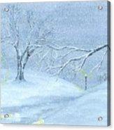 A Winter Walk... Acrylic Print by Robert Meszaros