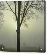 A Winter's Day In The Fog Acrylic Print