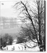 A Wintry Day Acrylic Print