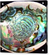 Abalone Seashell Acrylic Print