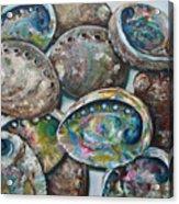 Abalone Shells Acrylic Print