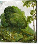 Abandoned Garden Acrylic Print