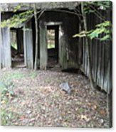 Abandoned House Acrylic Print by Terry  Wiley