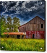 Abandoned Through The Reeds Acrylic Print