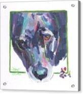 Abby Acrylic Print