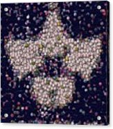 Abide Bottle Cap Mosaic Acrylic Print by Paul Van Scott