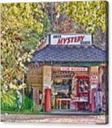 Abita Mystery House Acrylic Print