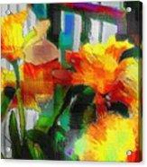 Absinthe Daffies Acrylic Print