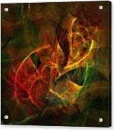 Abstract 051011 Acrylic Print