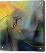 Abstract 071810 Acrylic Print