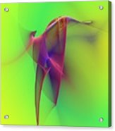 Abstract 091610 Acrylic Print