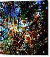 Abstract 126 Acrylic Print