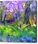 Abstract 16 Acrylic Print