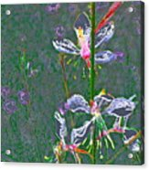 Abstract 171 Acrylic Print