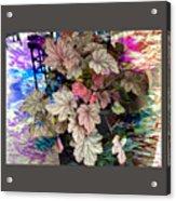 Abstract 340 Acrylic Print
