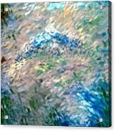 Abstract 6-03-09 A Acrylic Print