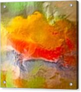 Abstract 6048 Acrylic Print