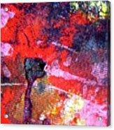 Abstract 6539 Acrylic Print
