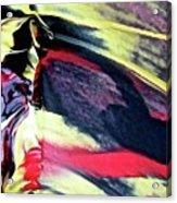 Abstract 6738 Acrylic Print