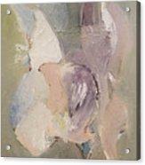 Abstract Aviary Acrylic Print
