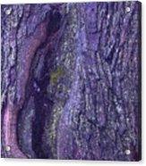 Abstract Bark 5 Acrylic Print