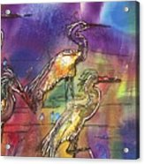 Abstract Birds Acrylic Print