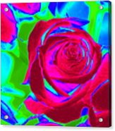Burgundy Rose Abstract Acrylic Print