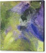 Abstract Close Up 1 Acrylic Print