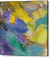 Abstract Close Up 13 Acrylic Print