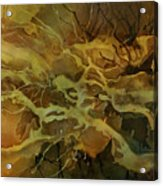 Abstract Design 21 Acrylic Print