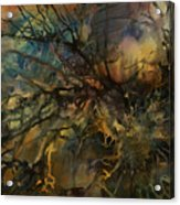 Abstract Design 88 Acrylic Print by Michael Lang