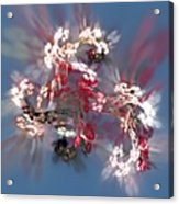Abstract Floral Fantasy  Acrylic Print