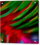 Abstract Frolic Acrylic Print
