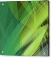 Abstract Green Vector Background Banner, Transparent Wave Lines  Acrylic Print