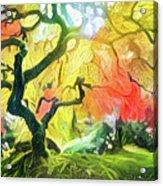 Abstract Japanese Maple Tree 5 Acrylic Print