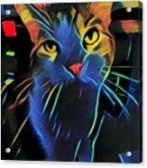 Abstract Kitty Acrylic Print