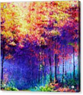 Abstract Landscape 0830a Acrylic Print