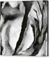 Abstract Monochome 154 Acrylic Print
