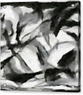 Abstract Monochome 156 Acrylic Print