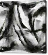 Abstract Monochome 158 Acrylic Print