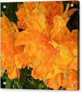Abstract Motif By Yellow Daffodils Acrylic Print
