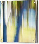 Abstract Moving Trees 30 Acrylic Print