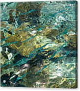 Abstract Of The Underwater World. Production By Nature Acrylic Print