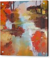 Abstract Of Wild Auge River  Acrylic Print