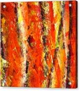 Abstract R-0176 Acrylic Print